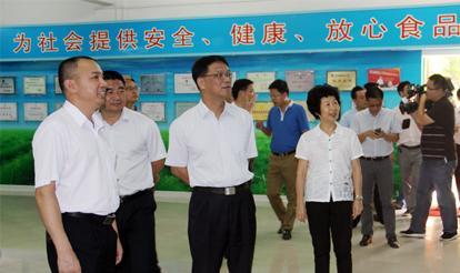 常务副市长张慧德莅临vwin博彩-VWIN真人|下载首页现场办公